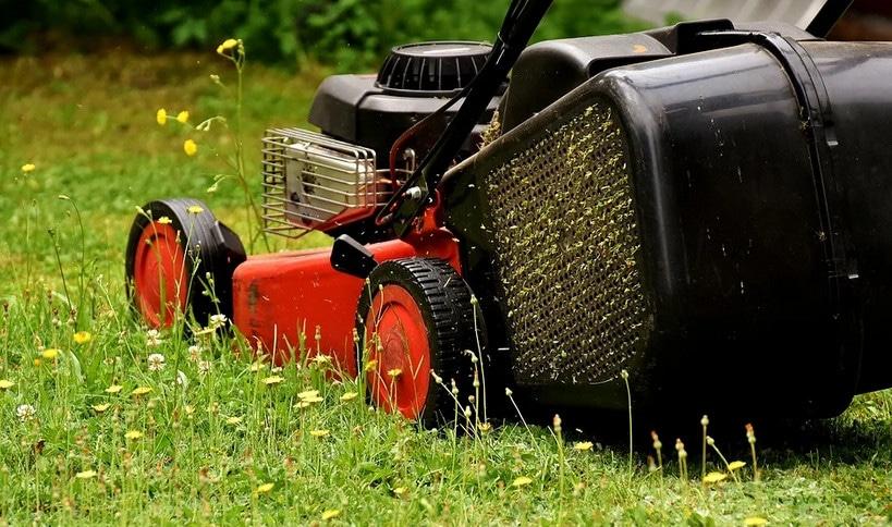 Astuces pour tondre une pelouse humide