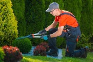 astuces pour aménager efficacement son jardin